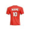 manchester united 2021 concept jersey back part