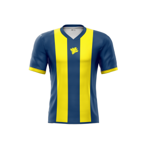 fenerbahce-striped-concept-jersey-front-part